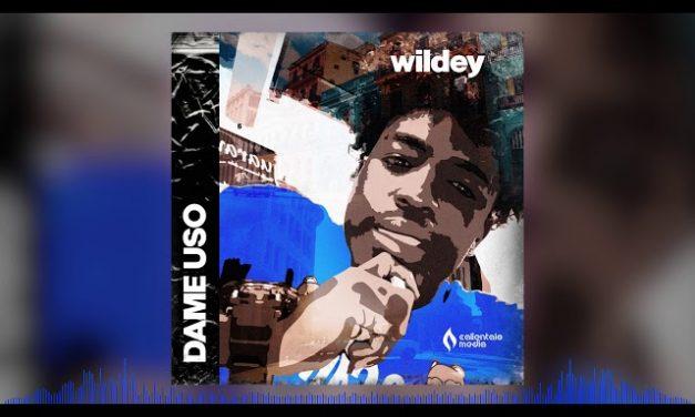 Wildey – Dame Uso